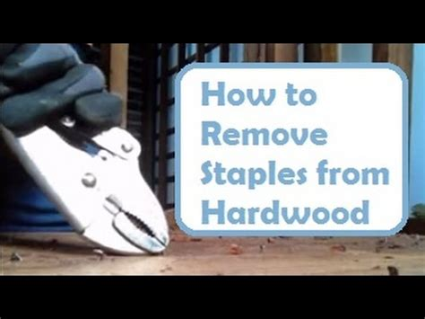 how to remove nails from wood floors repairing floors how to remove nails and staples from hardwood floor without damaging wood