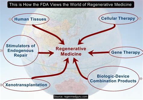 the miracle of regenerative medicine how to naturally the aging process books combination product regenerative medicine guru