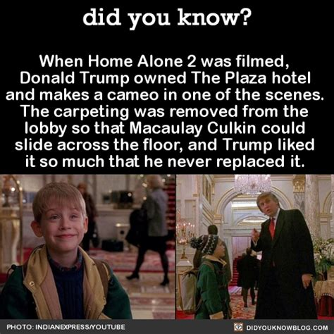 10 home alone 2 facts that will hopefully give you tim