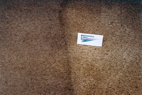 rug cleaning new ct carpet cleaning hartford ct floor matttroy
