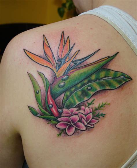 bird of paradise tattoo scripture tattoos designs bird of paradise designs