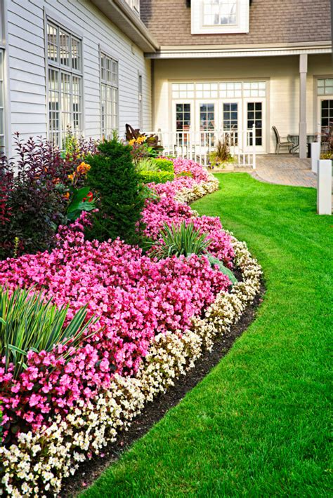 bed of flowers 25 magical flower bed ideas and designs