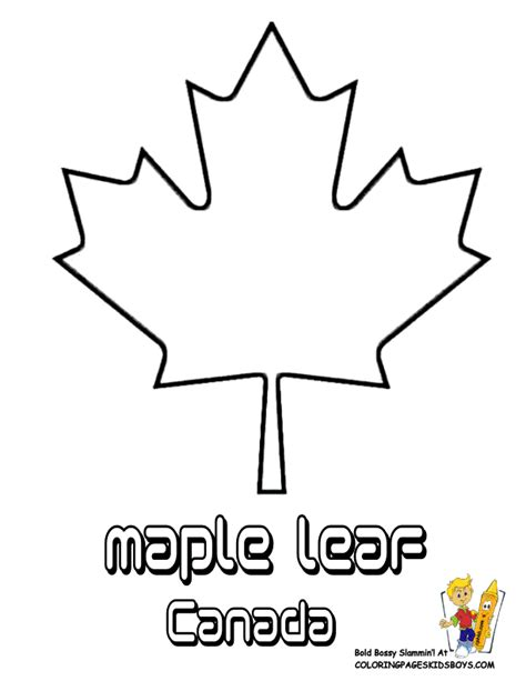 Canada Maple Leaf Outline by Maple Leaf Templates Clipart Best