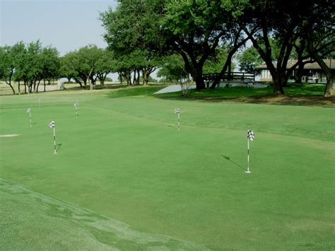 putting greens backyard golf green photos