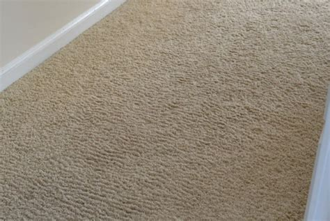 Karpet Wall To Wall corn rowing of wall to wall carpet carpets wall wall