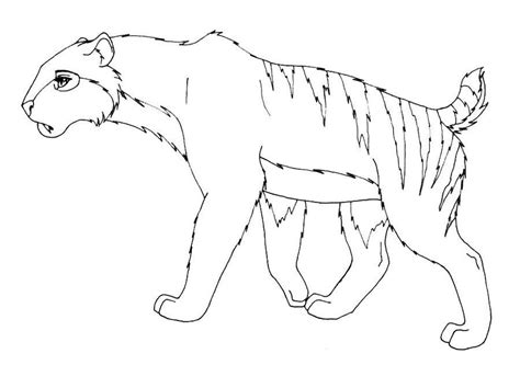 coloring page saber tooth tiger saber tooth tiger coloring page coloring home