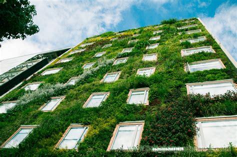 imagenes muros verdes los muros verdes de paisajismo urbano en m 233 xico revista