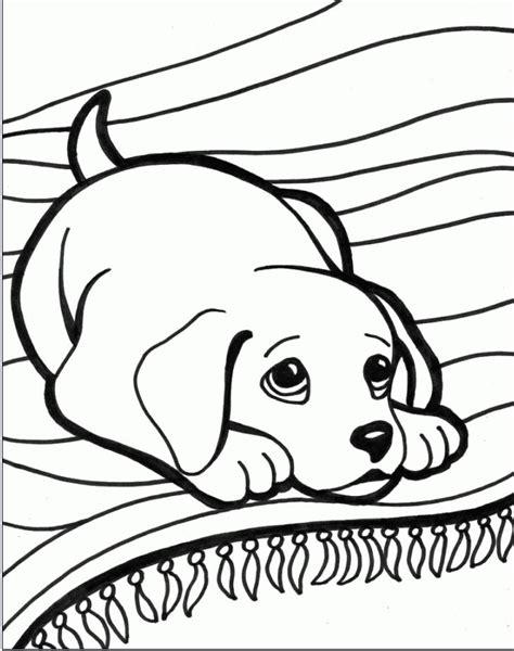 da disegnare disegni da colorare tema animali settemuse it