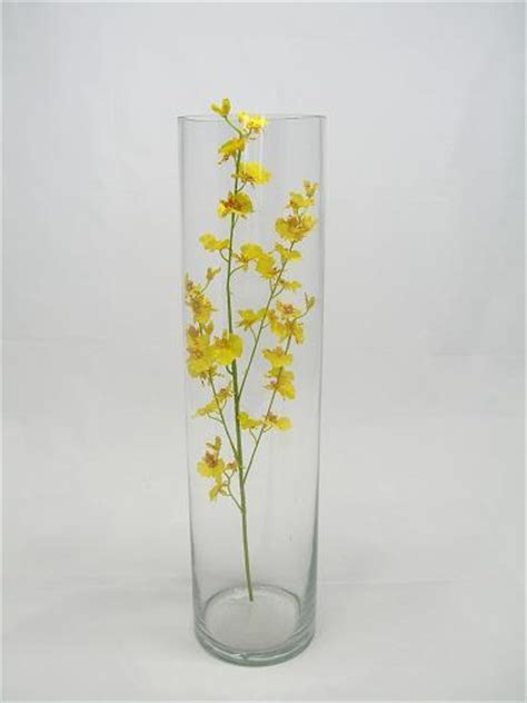 Rent Cylinder Vases by Simply Weddings Glass Vases Cylinder Vase Rentals