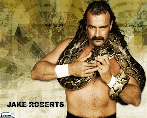 classic wrestling wallpaper cool wallpapers jake the snake roberts wallpapers