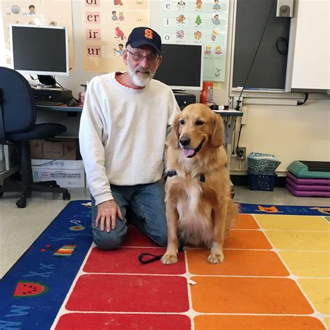 school for dogs baldwinsville elementary school students read to therapy dogs