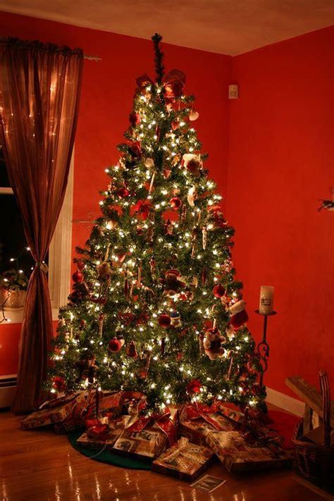 seit wann gibt es einen weihnachtsbaum schule