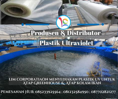 Jual Plastik Uv Di Jakarta manfaat plastik uv untuk atap kolam ikan pabrik dan