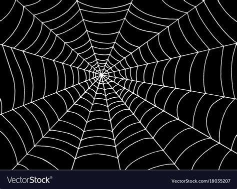 web images white spider web on black background doodle vector image