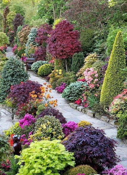 colorful shrubs colorful shrubs and trees garden trees shrubs