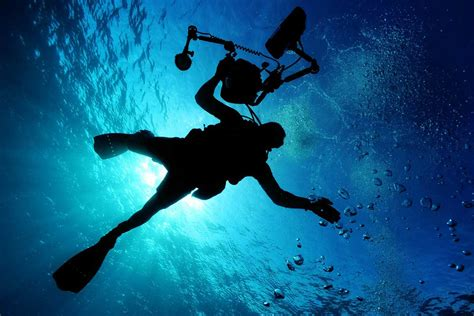 dive master padi professional padi courses phangan international diving
