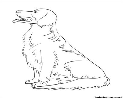 printable coloring pages golden retriever golden retriever coloring book page pages grig3 org