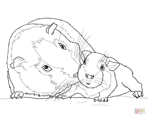 coloring page of a guinea pig guinea pig mother and baby coloring page free printable