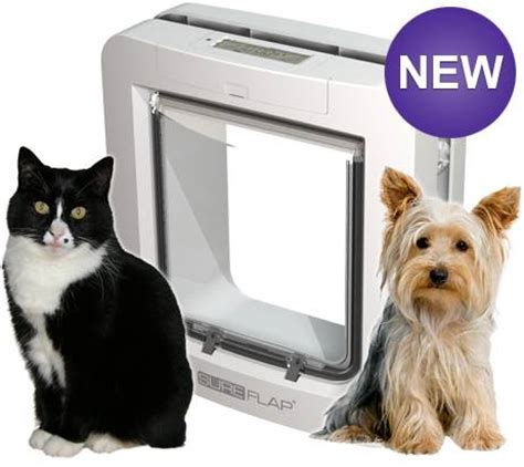 microchip door sureflap microchip pet door catcetera