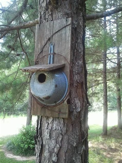 64 best images about birdhouses on pinterest for the