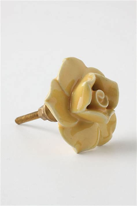 Anthropologie Knobs by Nwt Anthropologie Yellow Rosy Knobs Set Of Six Knobs
