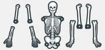 skeleton cut out template printable skeleton template