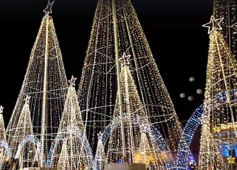 xmas tree structure ara birżebbuġa record of greatest trees structure tvm news