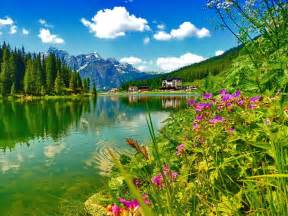 nature wallpaper daydreaming wallpaper 34811091 fanpop