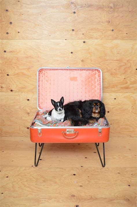 suitcase dog bed vintage repurposed red suitcase dog bed with hairpin legs dog beds
