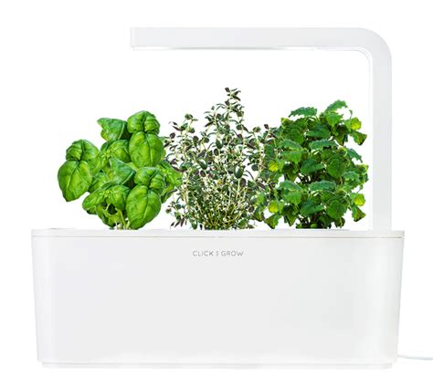 grows herbs and plants with smart herb garden in your a grown up smart countertop herb garden