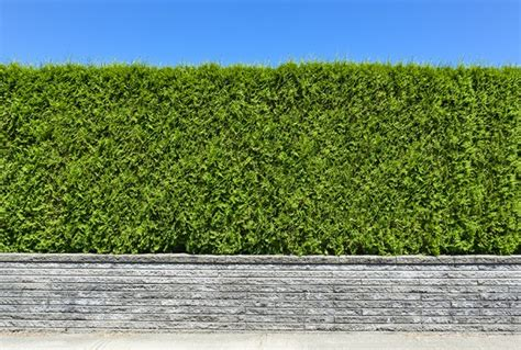 Planning Permission Series Do I Need Planning Permission Garden Walls Planning Permission