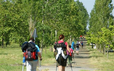 el camino frances 191 quieres hacer el camino de santiago en 7 d 237 as