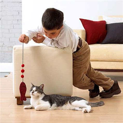 pets archives simple home diy ideas 41 crafty diy projects for your pet