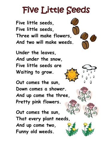 new year poems ks1 themed poems ks1 seeds and plants by kcoates teaching
