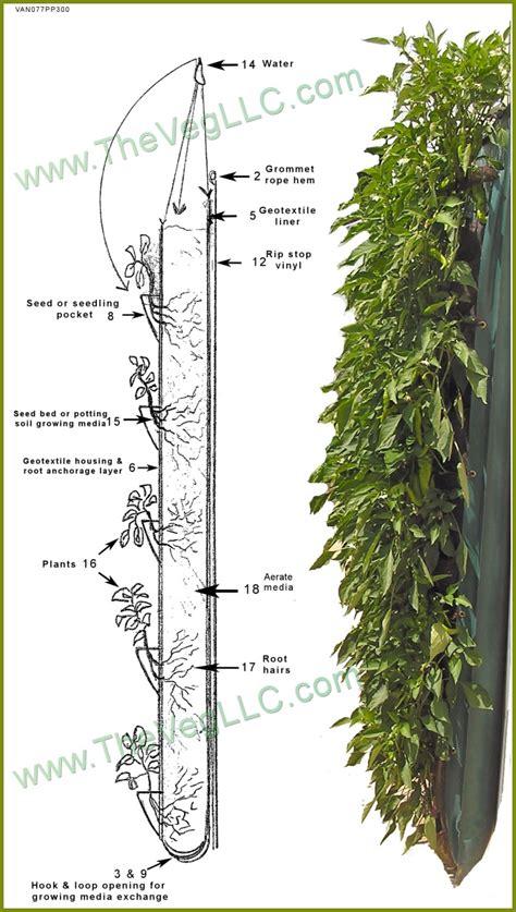 vertical garden detail 130 best images about