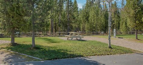 yellowstone grizzly rv park 5 photos 2 reviews west