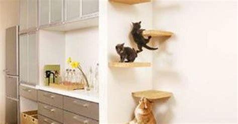 Katzentreppe In Der Wohnung Jpg 684 215 1052 Katzen