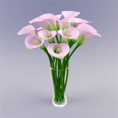 You Place The Flowers In The Vase by Vases Design Ideas Flower Vase Stock Photos Royalty Free