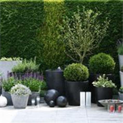vasi particolari per piante vasi arredo interno vasi per piante vasi arredo