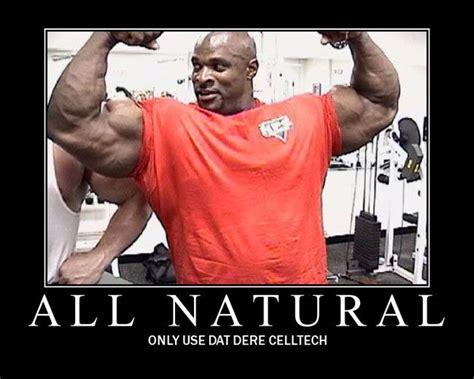 Bodybuilding Meme - funny bodybuilding motivation