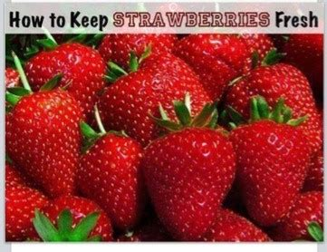 how to keep strawberries fresh longer musely