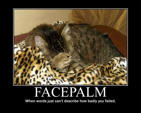 Facepalm Meme - cat facepalm by janora00 on deviantart