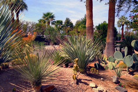 desert auto plaza jessup auto plaza a palm desert palm springs la autos post