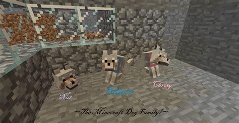 minecraft dog family  thatangrywitch  deviantart