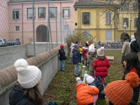 ufficio scuola rubiera 20 11 2008 al via la festa dell albero