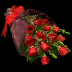 dozen roses wrapped dozen roses