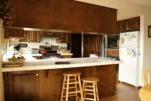 1980s kitchen life august 2010