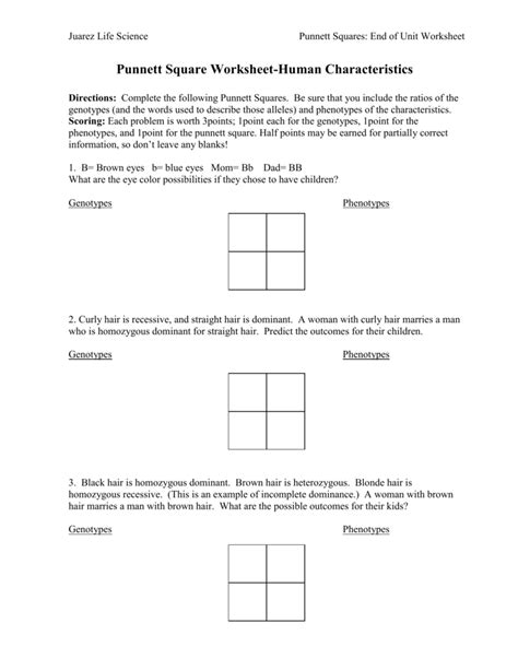 Punnett Square Problems Worksheet by Uncategorized Punnett Square Worksheet Klimttreeoflife