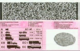 what does a sa drivers license look like road safety