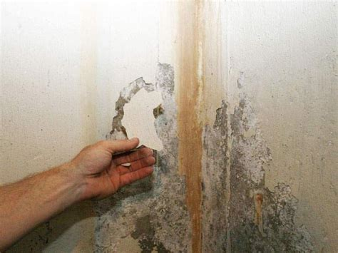 muri umidi il tuo problema si chiama umidit 224 di risalita